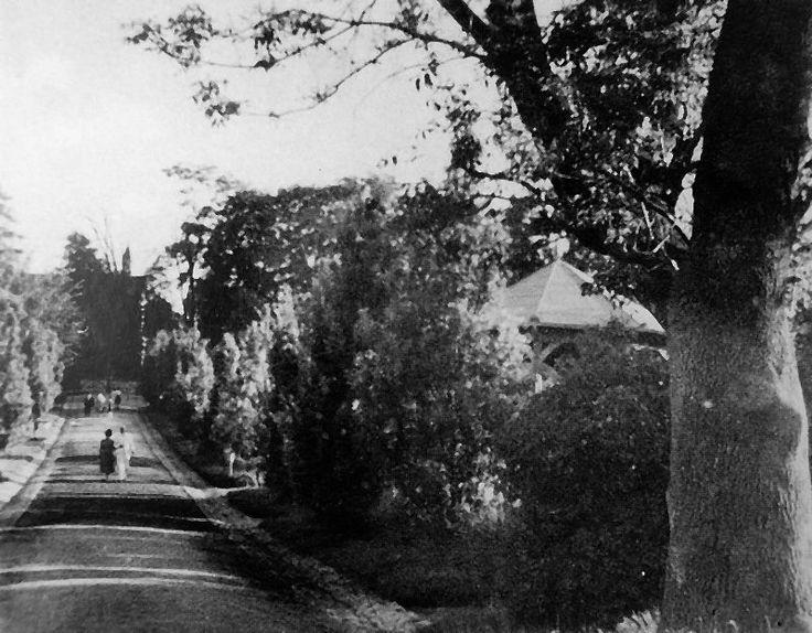 Park Miechowski 1940 rok