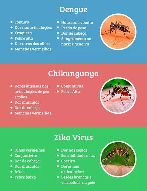 Entenda quais os sintomas e as medidas para evitar esta doença.