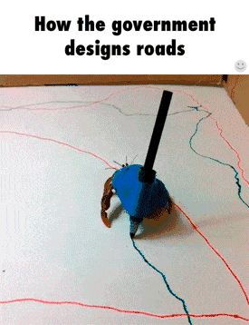 How the government designs roads / iFunny :)