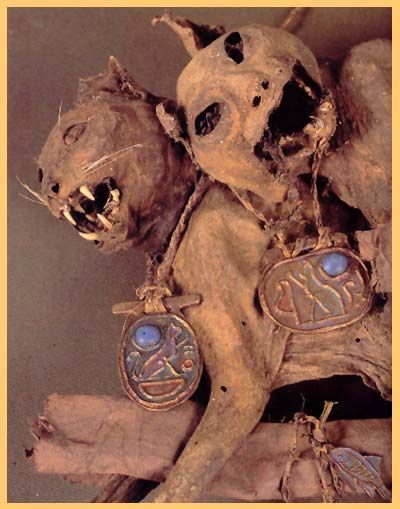 cat mummies  ( THIS LEADS TO A VERY INTERESTING WEB SITE )