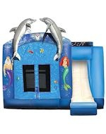 Under The Sea Combo: Bounce Houses, Beach Party, Dolphin Party, Products, Under The Sea, Party Ideas, Birthday Party, Sea Combo