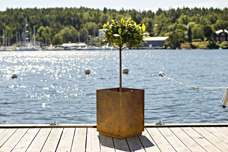Corten steel on the jetty at the Baltic Sea. First Bloom, made by Late Blooming in corten steel. H54cmxW40cmxD40cm. Available in two sizes.