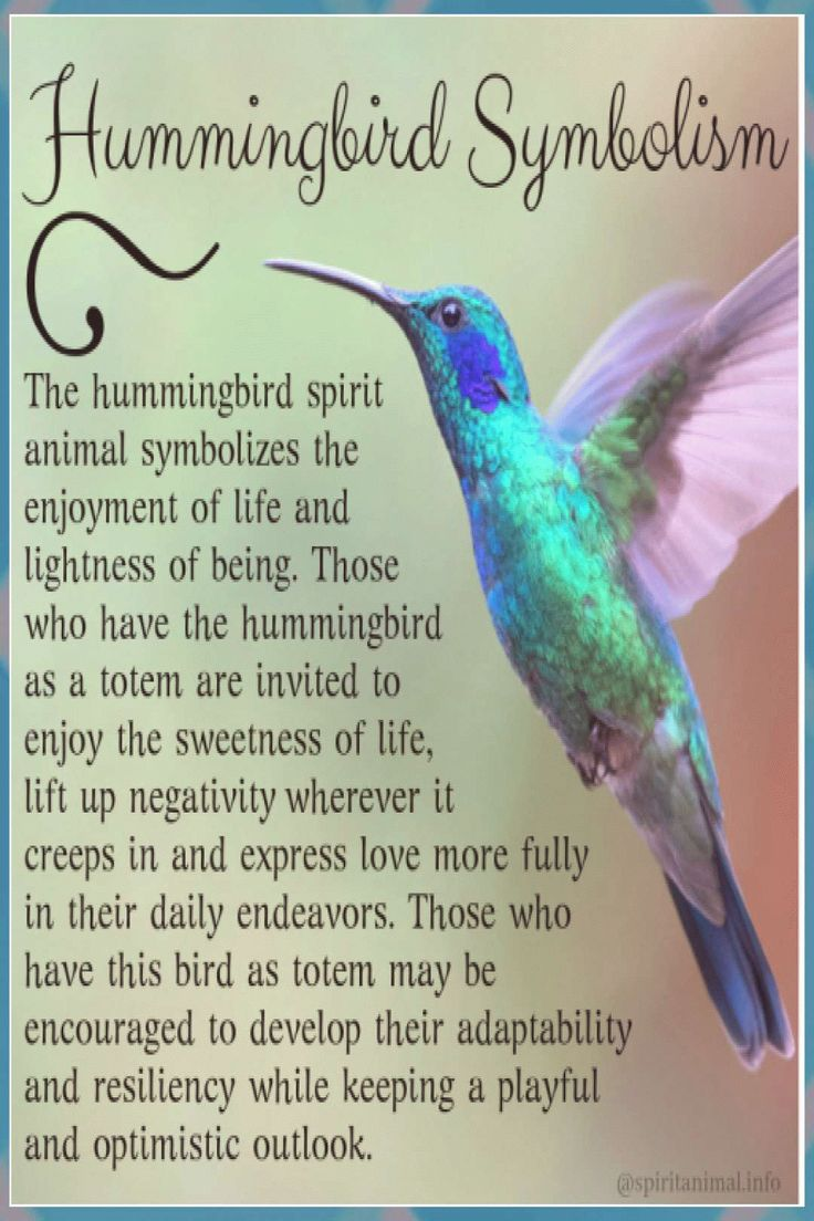 what is the hummingbird a symbol of