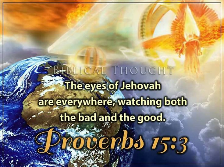 Saturday, November 19 The eyes of Jehovah are everywhere, watching both the bad and the good.—Prov. 15:3. http://wol.jw.org/en/wol/h/r1/lp-e