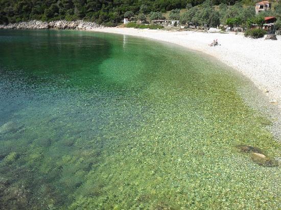 SPIAGGIA DI LEFTOS GIALOS (Alonissos) - Spiaggia piccola, ricavata in una baia incantevole, ed è di sabbia bianca finissima, bagnata da un mare cristallino e turchese. La presenza inoltre di verdi alberi che circondano la spiaggia, la rende una delle più belle di tutta l'isola.