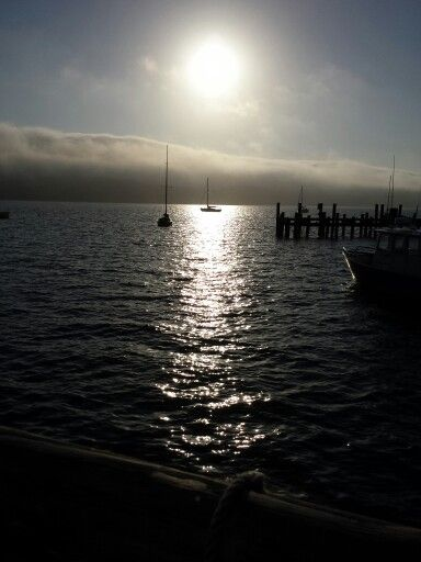 Fog rolling over Tomales Bay
