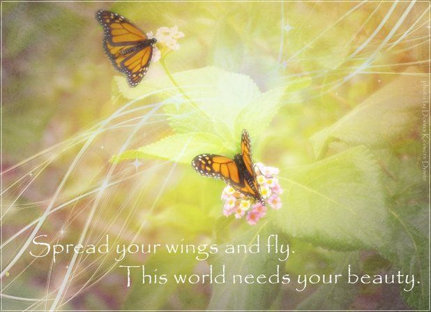 Spread your wings and fly. This world needs your beauty.