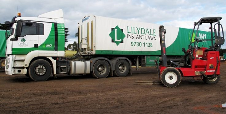 Home delivery and pick up options - Lilydale Instant Lawn | Lilydale Instant Turf | Love your lawn | Great grass | Lily & Dale | Follow us | Garden Tips & Advice | Contact us | Lawn Solutions Australia