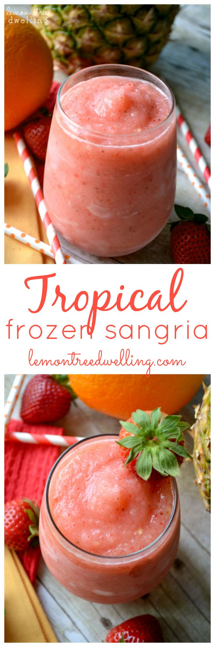Tropical Frozen Sangria | Lemon Tree Dwelling