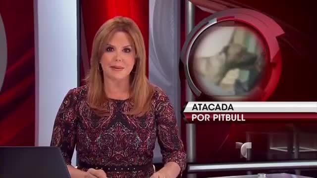 Un Perro Pitbull Atacó A Una Niña De 9 Años Y La Mató #Video