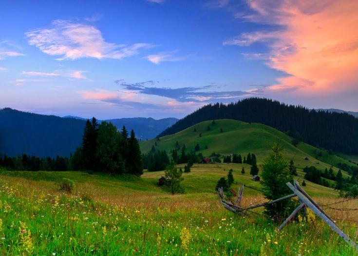 Natura este singura carte în care fiecare filă păstrează câte un adevăr.