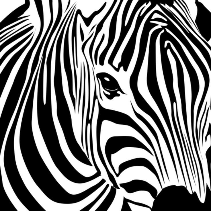 zebra silhouette                                                                                                                                                                                 More