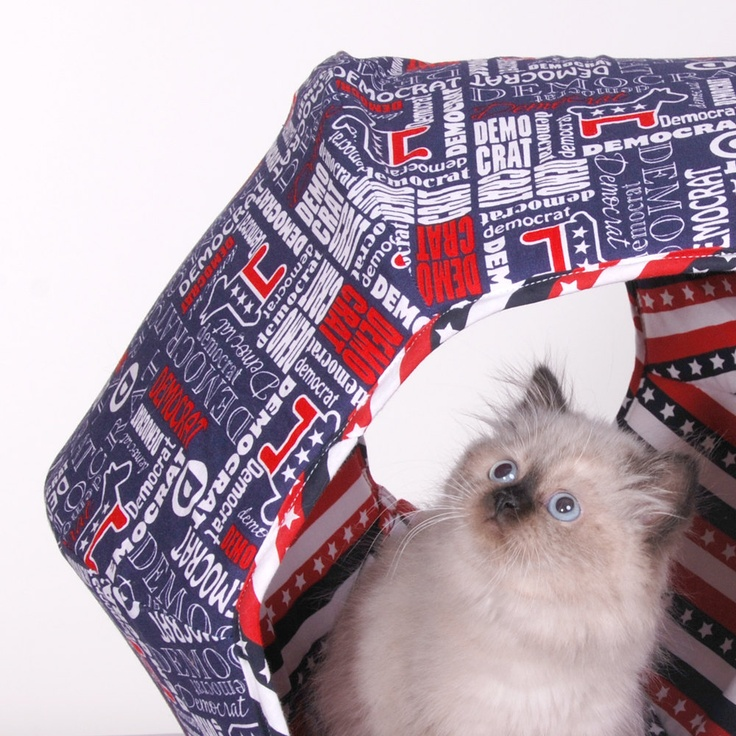 Feline Voting Booth Contraption Cat Bed for your democratic cat, hilarious!
