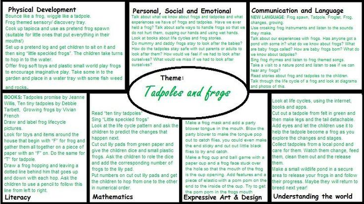 Frogs and Tadpoles Medium Term EYFS plan
