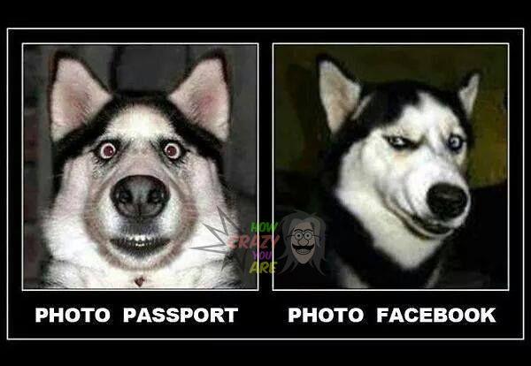 #Passport Vs #Facebook Profile piC