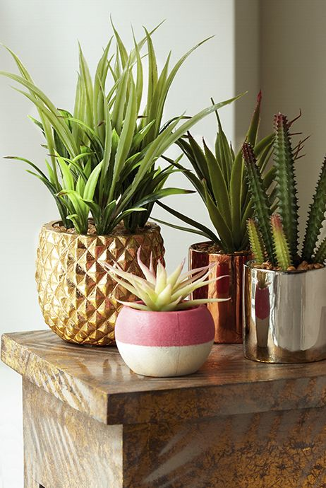 You can never have too many faux plants right?
