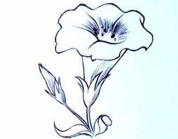 Image Result For Flores Bonitas Para Dibujar A Lapiz Profesionales
