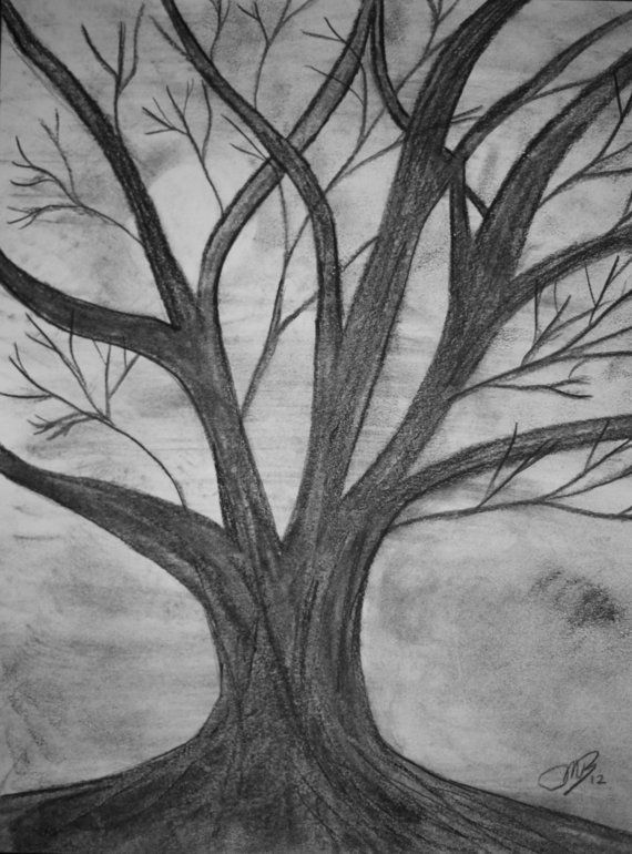 Gallery For gt Easy Charcoal Drawings Of Trees