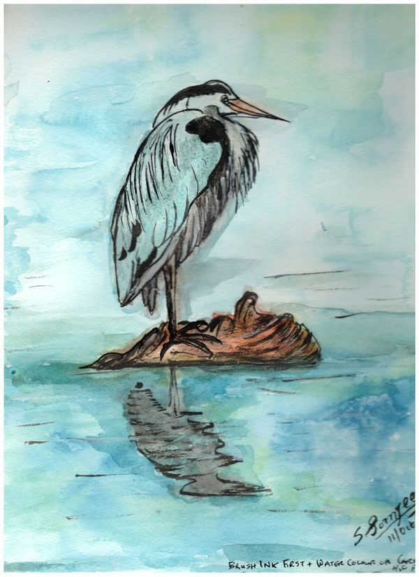 I live on the west coast of Canada and Great Blue Herons scatter the shores, lakes, ponds and rivers. Waiting for crayfish, frogs, ...