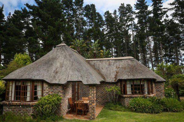 Stunning setting in gardens & forest near Plettenberg Bay 4 Star graded Coral Tree Cottages  http://www.coraltreecottages.co.za