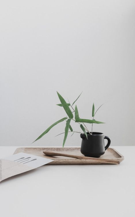 #bamboo #simplicity  @andwhatelse