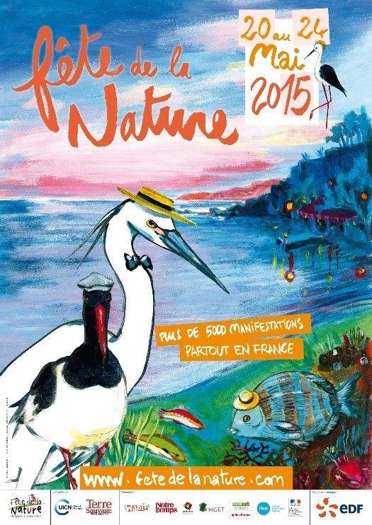 Pour sa 9ème édition, la Fête de la Nature mettra cette année à l'honneur les bords de l'eau à l'occasion du 40ème anniversaire du Conservatoire national du littoral et de son action de protection. Au programme : observations d'animaux visibles à marée...