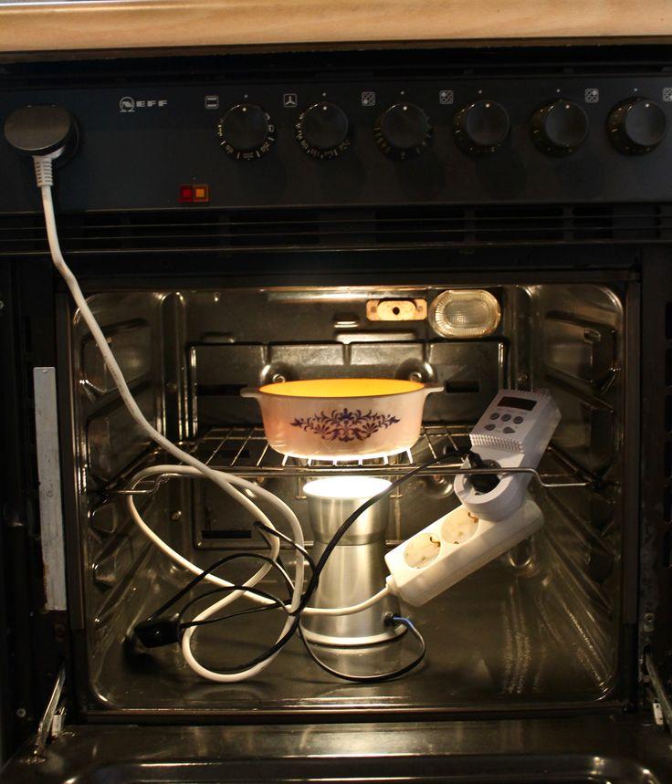 DIY Inkubationskammer aus:  * Einem Backofen, * einem Lavalampengestell, * einer Thermostatsteckdose, * einer kleinen Auflaufform  #Tempeh #DIY