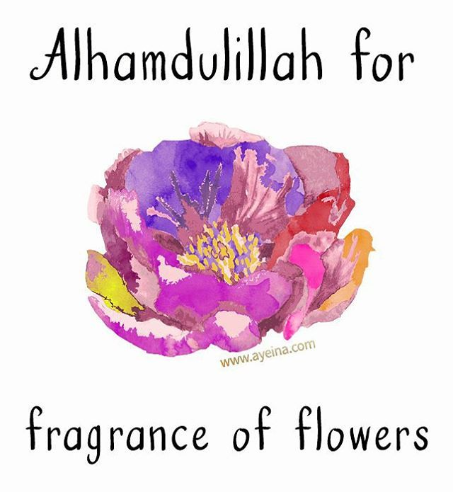 8. Alhamdulillah for fragrance of flowers #AlhamdulillahForSeries