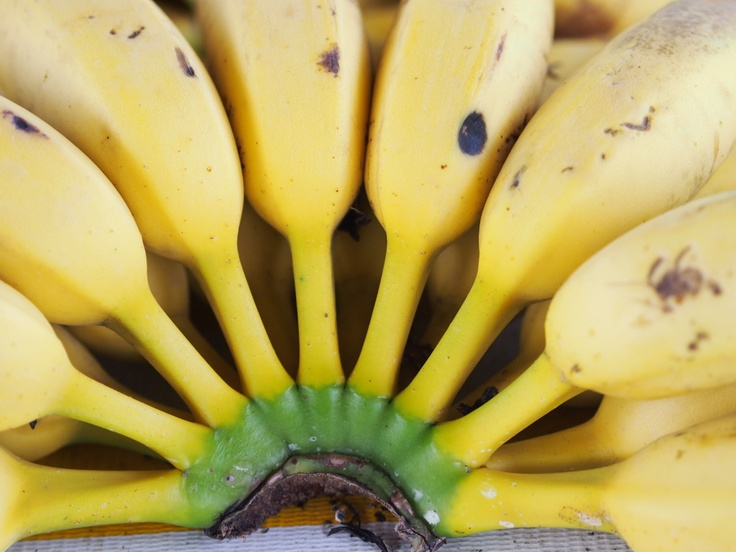 Bananas, Keep a couple out, and open the rest and freeze.