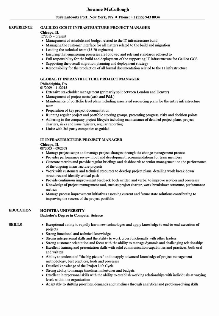 It Project Manager Resume Examples Best Of It