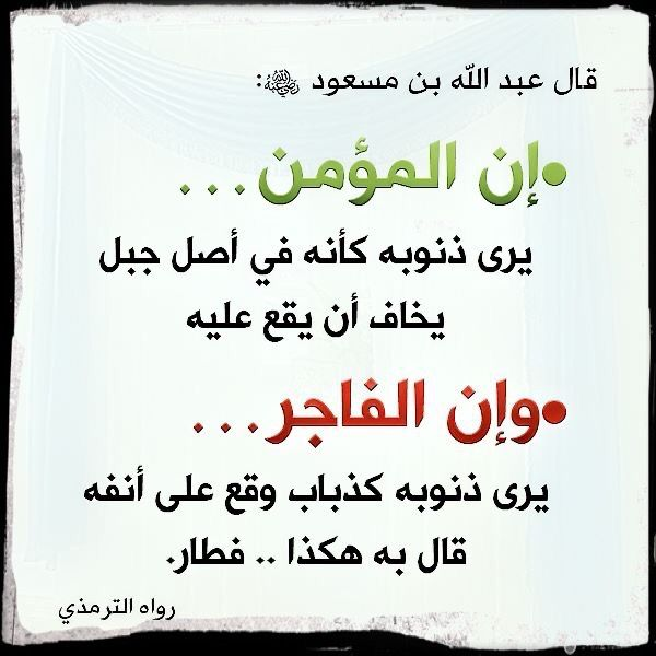 Pin On سيدقطب