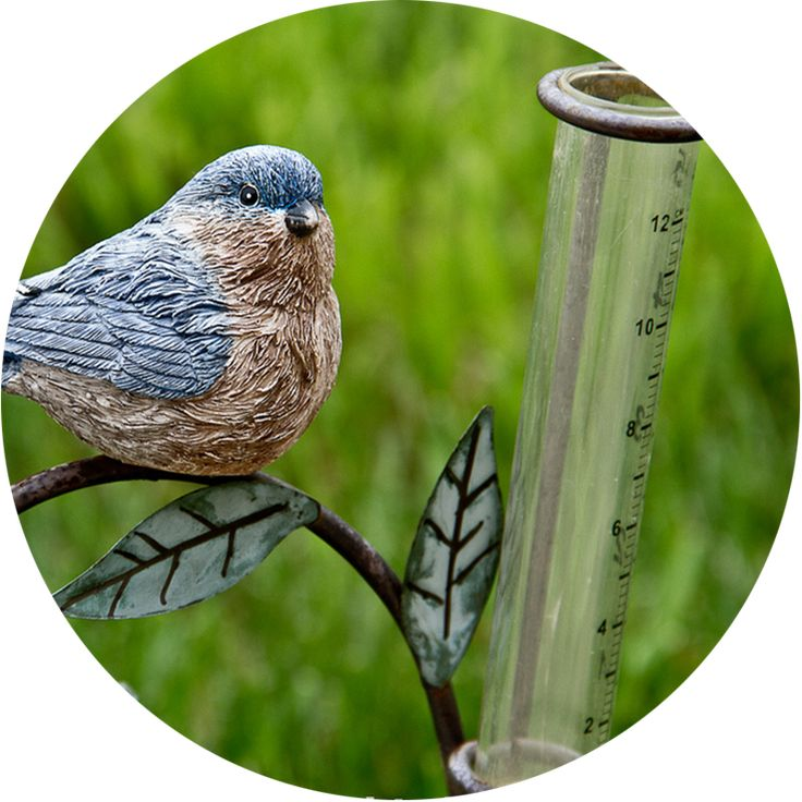 Weather-Tracking Tools: This lesson offers ideas for homemade weather-tracking tools to help you learn how to observe rain, air pressure and humidity in your school garden.
