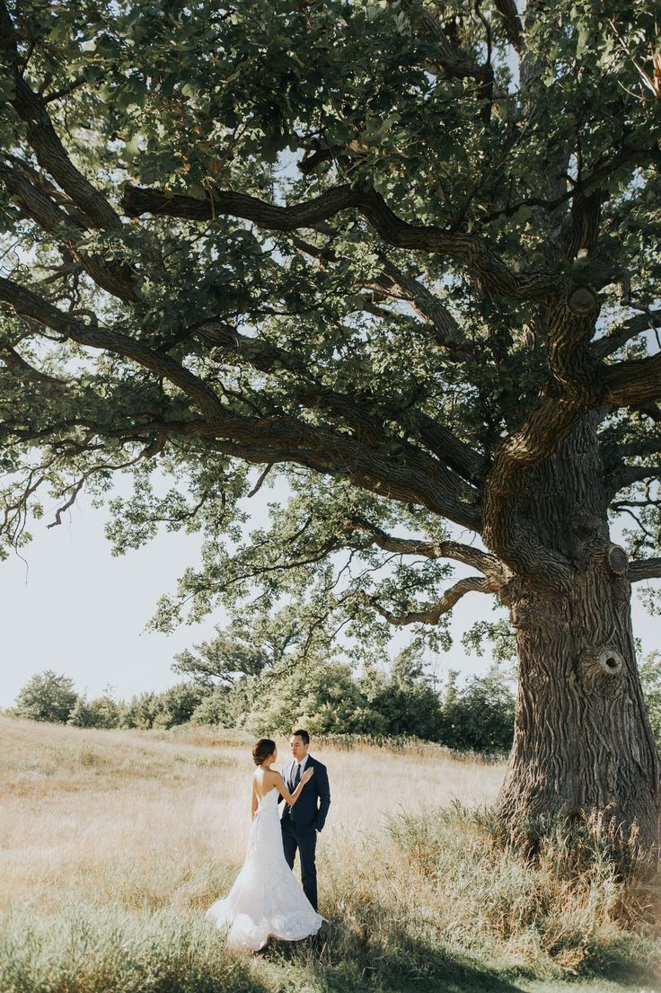Ethereal Pipers Heath Golf Club Wedding With A Rustic Touch