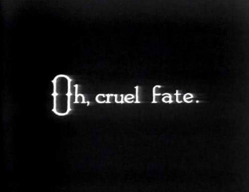 A topic that came up in the story was fate and that wether their lives were determined by fate or not.