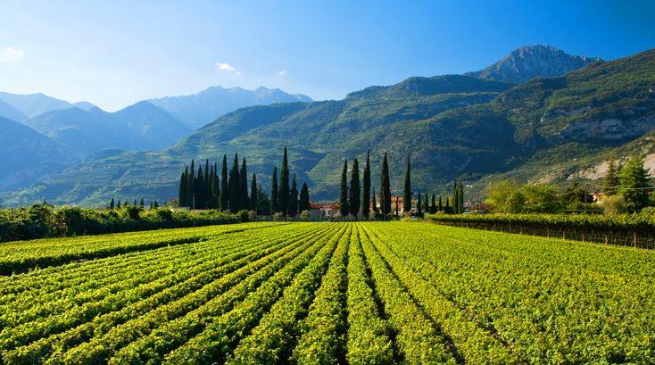 Valle dei Laghi, Trentino, Italia