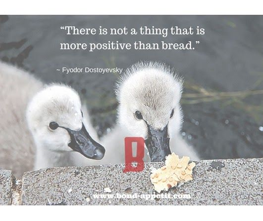 """There is not a thing that is more positive than bread."" ~ Fyodor Dostoyevsky"