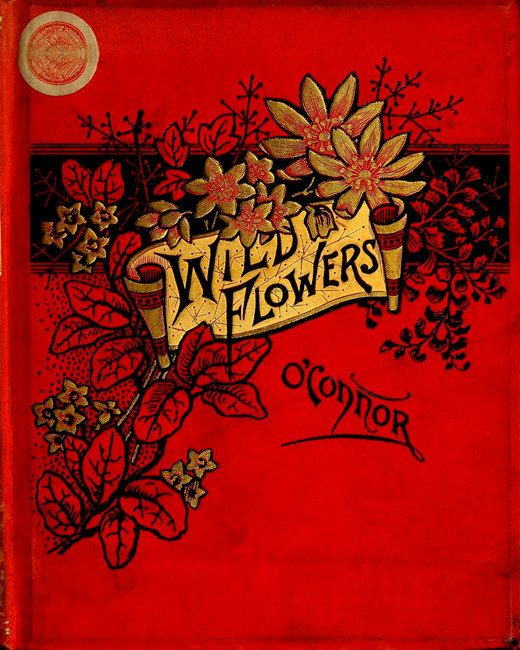 Antique Botanical Print Wild Flowers Vintage Woodland Floral Illustration - Victorian Book Cover - Red and Gold Art Nouveau Art Deco via Etsy