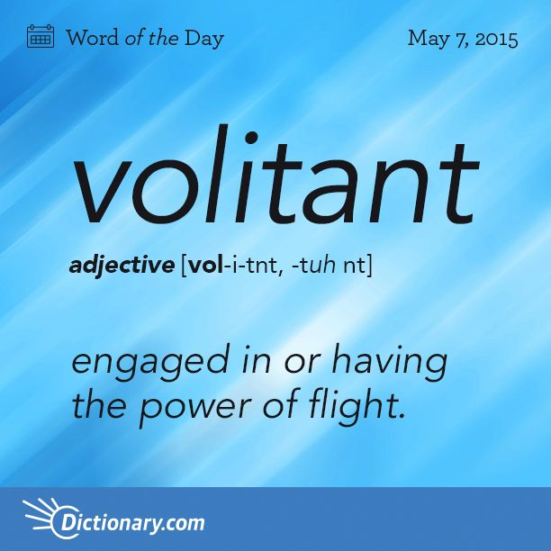 Dictionary.com's Word of the Day - volitant - engaged in or having the power of flight.