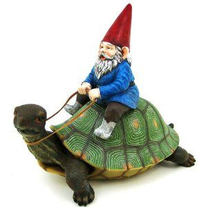 gnome on a turtle