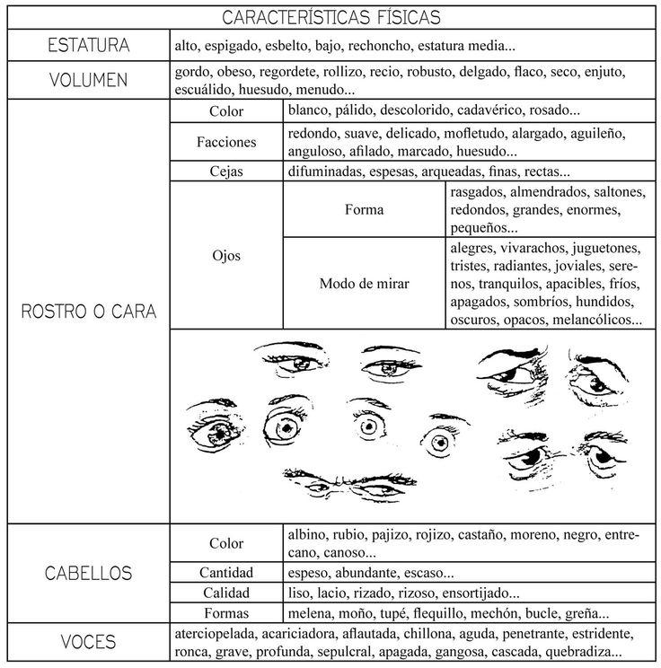 Vocabulario - características físicas