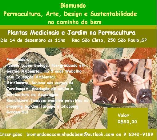 Plantas Medicinais E Jardim Na Permacultura – Rede PSB ~ Plantas Brasileiras Jardim