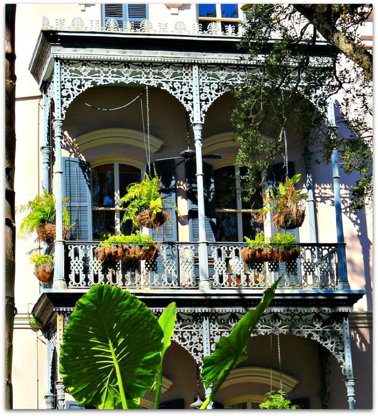 17 Best Images About Photos New Orleans On Pinterest