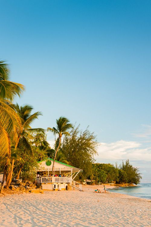 Mullins Bar on Barbados's west coast has been going for over 20 years. 100 miles…