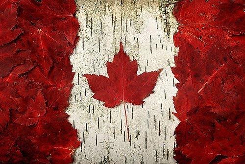 Ohhhh Canada. #canada #flag #mapleleaf