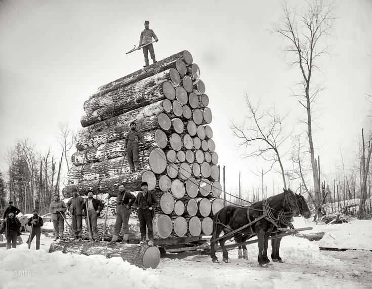 "Michigan circa 1890s. ""Logging a big load."" Continuing our Michigan travelog. 8x10 inch dry plate glass negative, Detroit Publishing Company. 