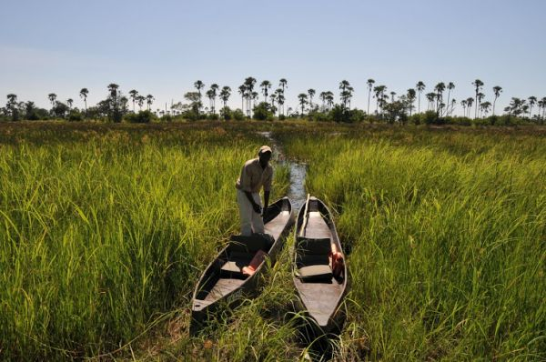 Four Ways to Explore the Okavango Delta | Blog | http://underonebotswanasky.com/camps/gunns-camp.php