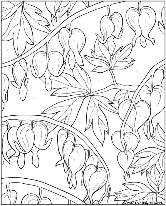 2561 best flower coloring images on Pinterest Adult coloring - fresh coloring pages roses and hearts