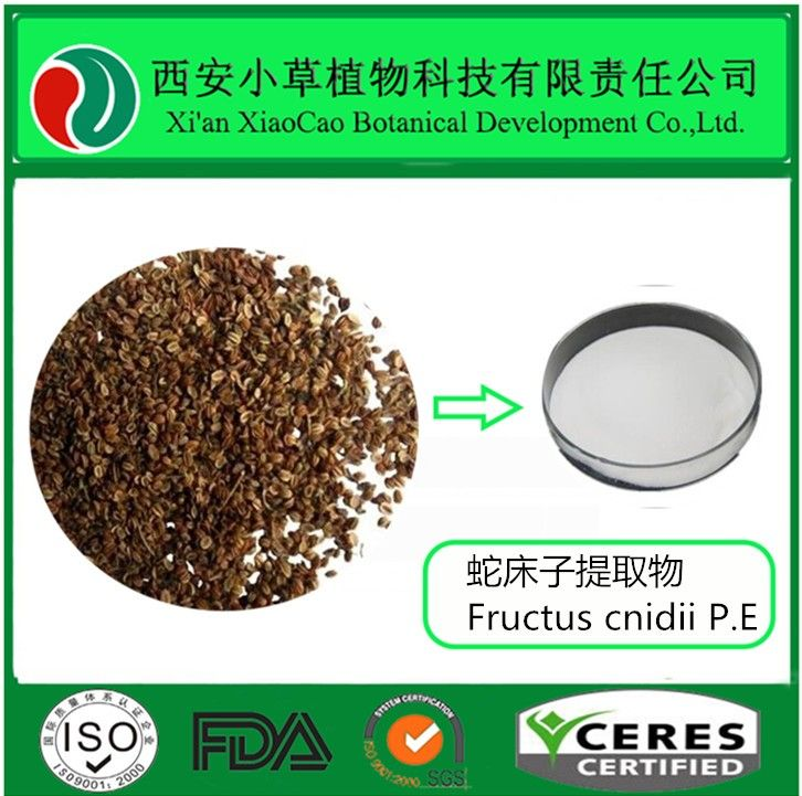 Organic Cnidium Monnieri Extract. Osthole is extracted from cnidium monnieri,specification conventional 35%, 50%, etc. Osthole of the low content is yellow-green powder, Osthole of high levels is white needle-like crystal powder. Osthole was dissolved in an alkali solution, methanol, ethanol, chloroform, acetone, ethyl acetate, and boiling petroleum ether, etc., Osthole do not dissolve in water and petroleum ether.