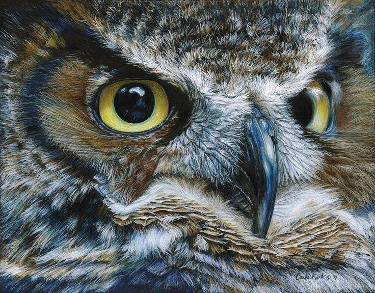 Dark Owl Painting by Carla Kurt