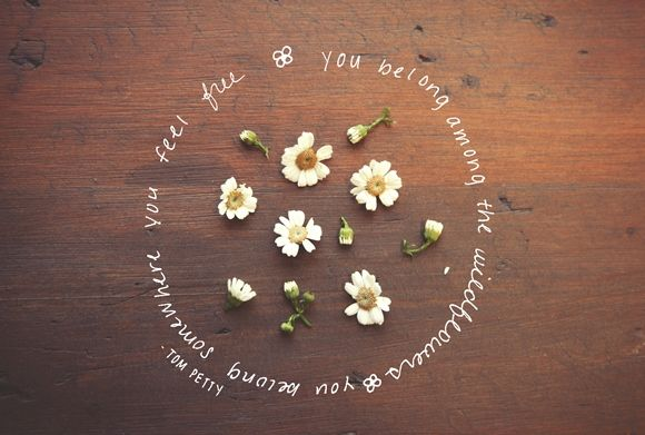 Monday Quote: Among The Wildflowers http://blog.freepeople.com/2013/01/monday-quote-wildflowers/